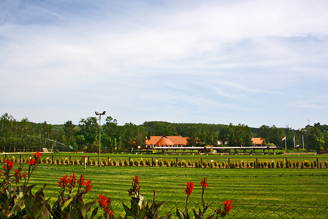 hipódromo césped vegetación Puszta gran llanura Hungría