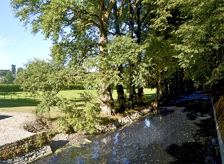 Río Cher campos jardines árboles castillo Chenonceau Francia