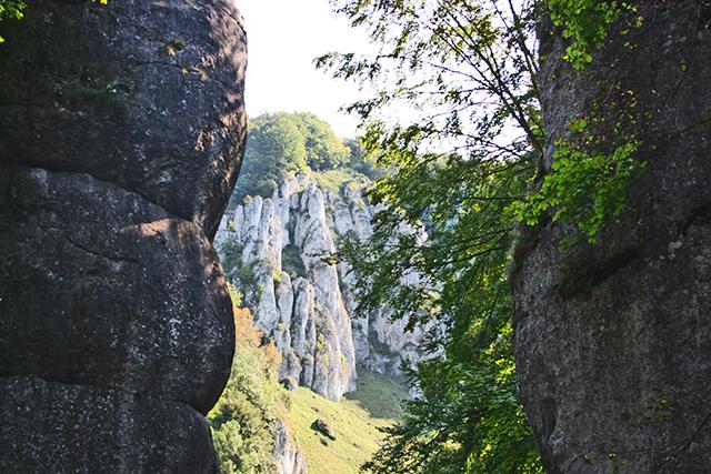Mano gigante formación rocosa calcárea Parque Nacional Ojcow Cracovia