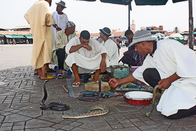 Encantadores serpientes Plaza Djemaa El Fna Marrakech