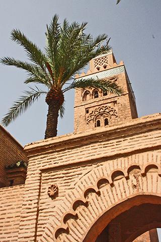 Vista contrapicado palmera Koutoubia Marrakech