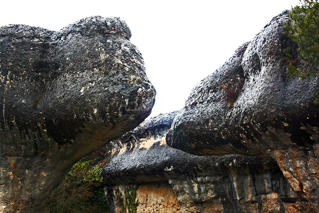 Forma rocas reptiles Ciudad Encantada Cuenca