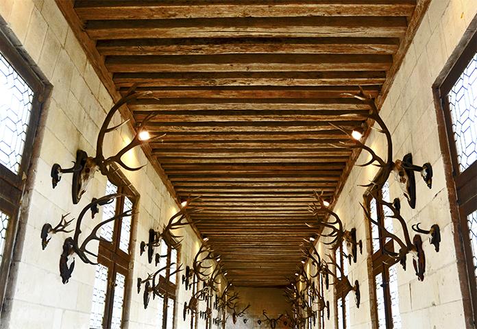 Salón trofeos caza cuernos reno castillo Chenonceau Francia