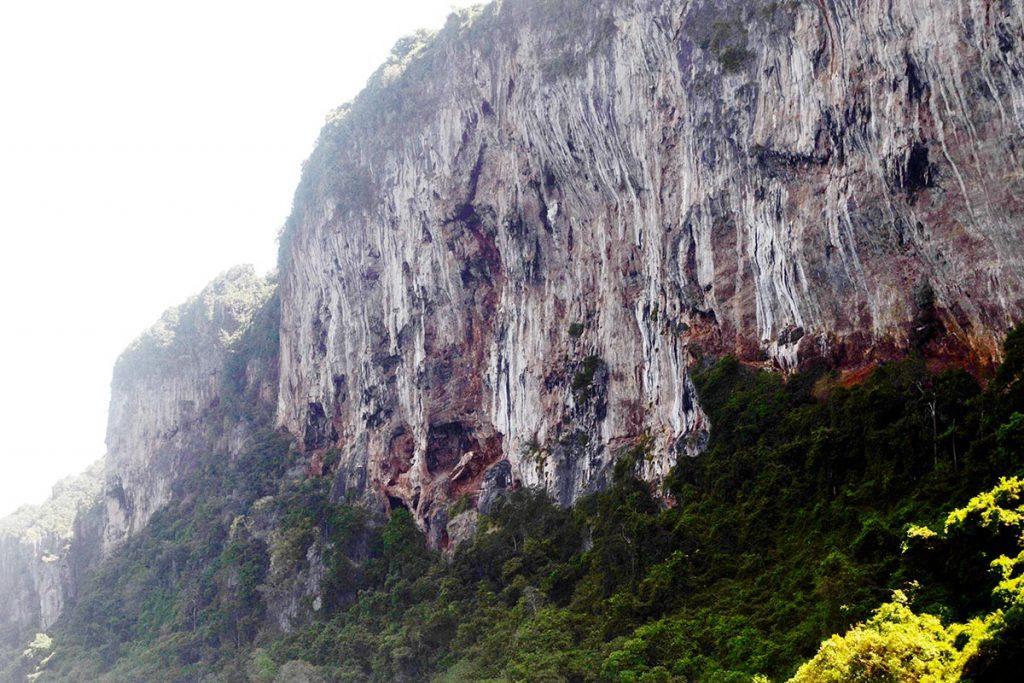 Desfiladero acantilado rocas vegetación Islas Phi Phi Tailandia